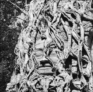 Angkor-Cernuschi-Opus-Rouge