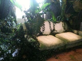 Suite_Elle_Deco_JP_Gaultier_Jungle 2