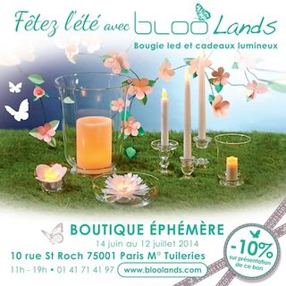Bloolands-bougies-reduc